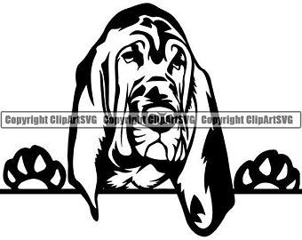 Bloodhound clip art.