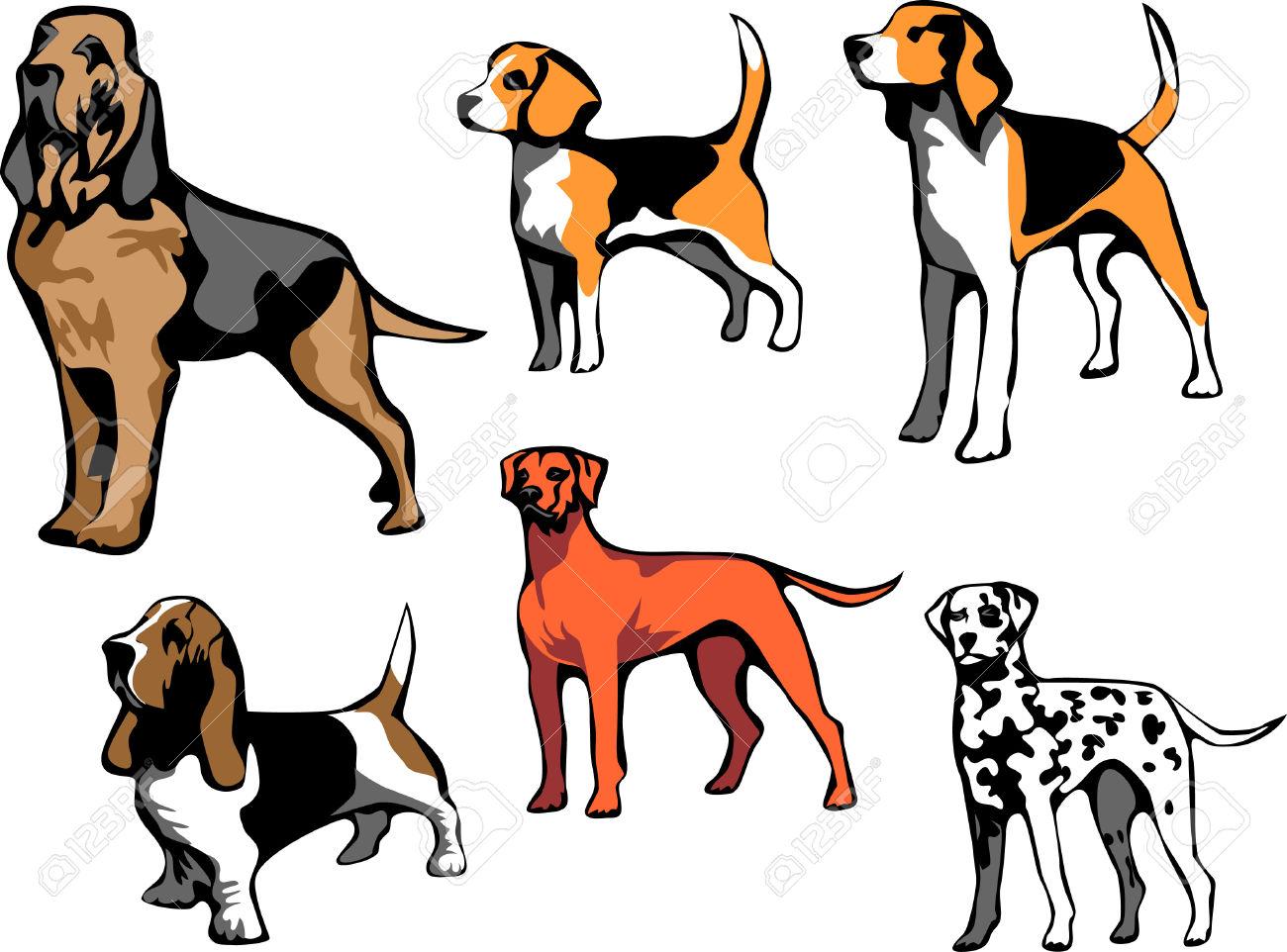 Beagle clipart bloodhound, Beagle bloodhound Transparent.