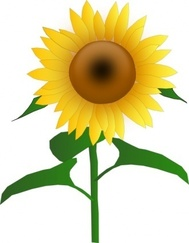 Bloom bloom clipart #9