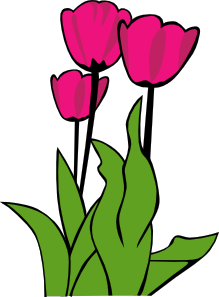 Tulips In Bloom clip art Free Vector / 4Vector.