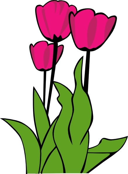 Tulips In Bloom clip art Free vector in Open office drawing svg.