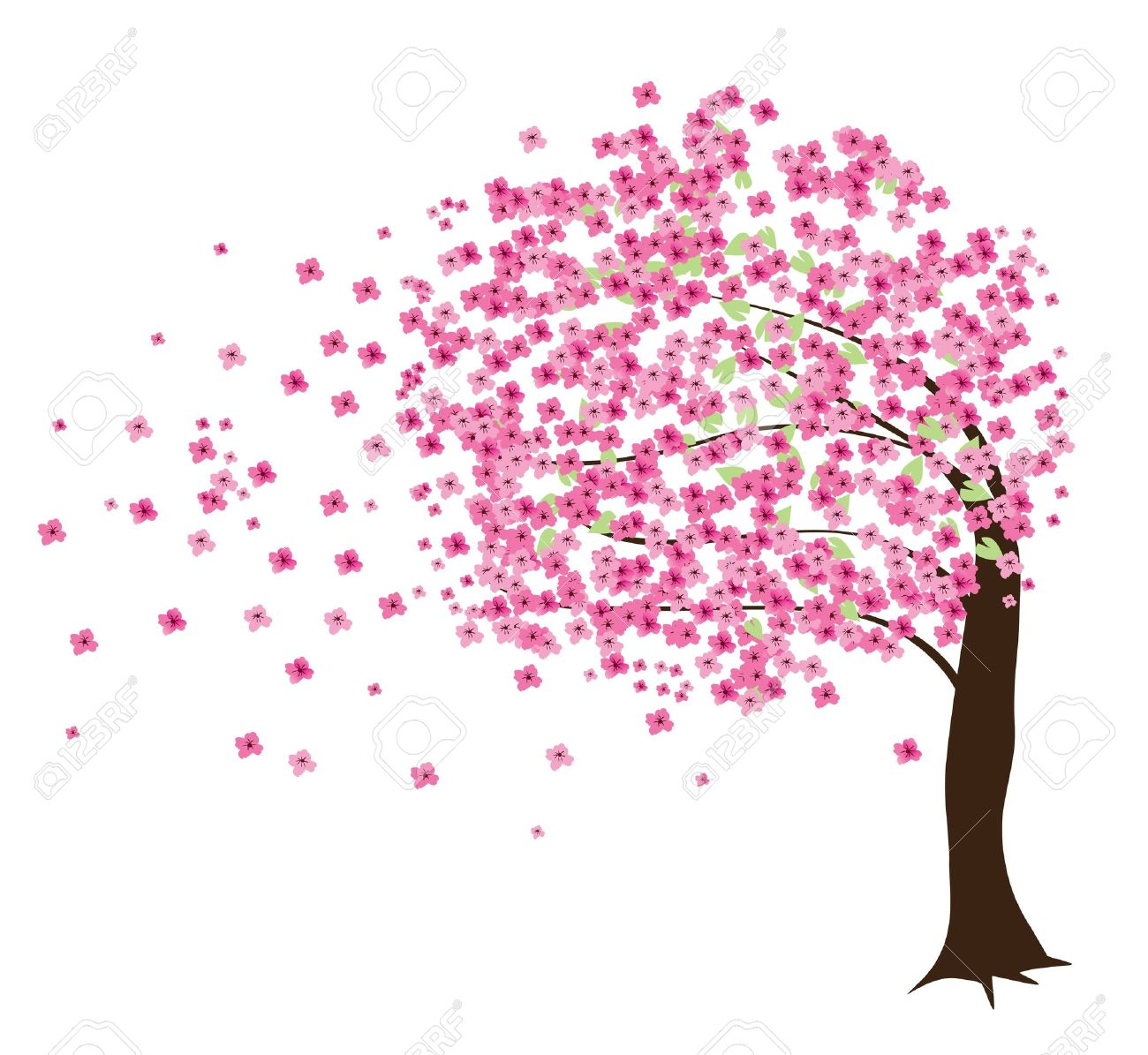 Vector Cherry Tree In The Wind Royalty Free Cliparts, Vectors, And.