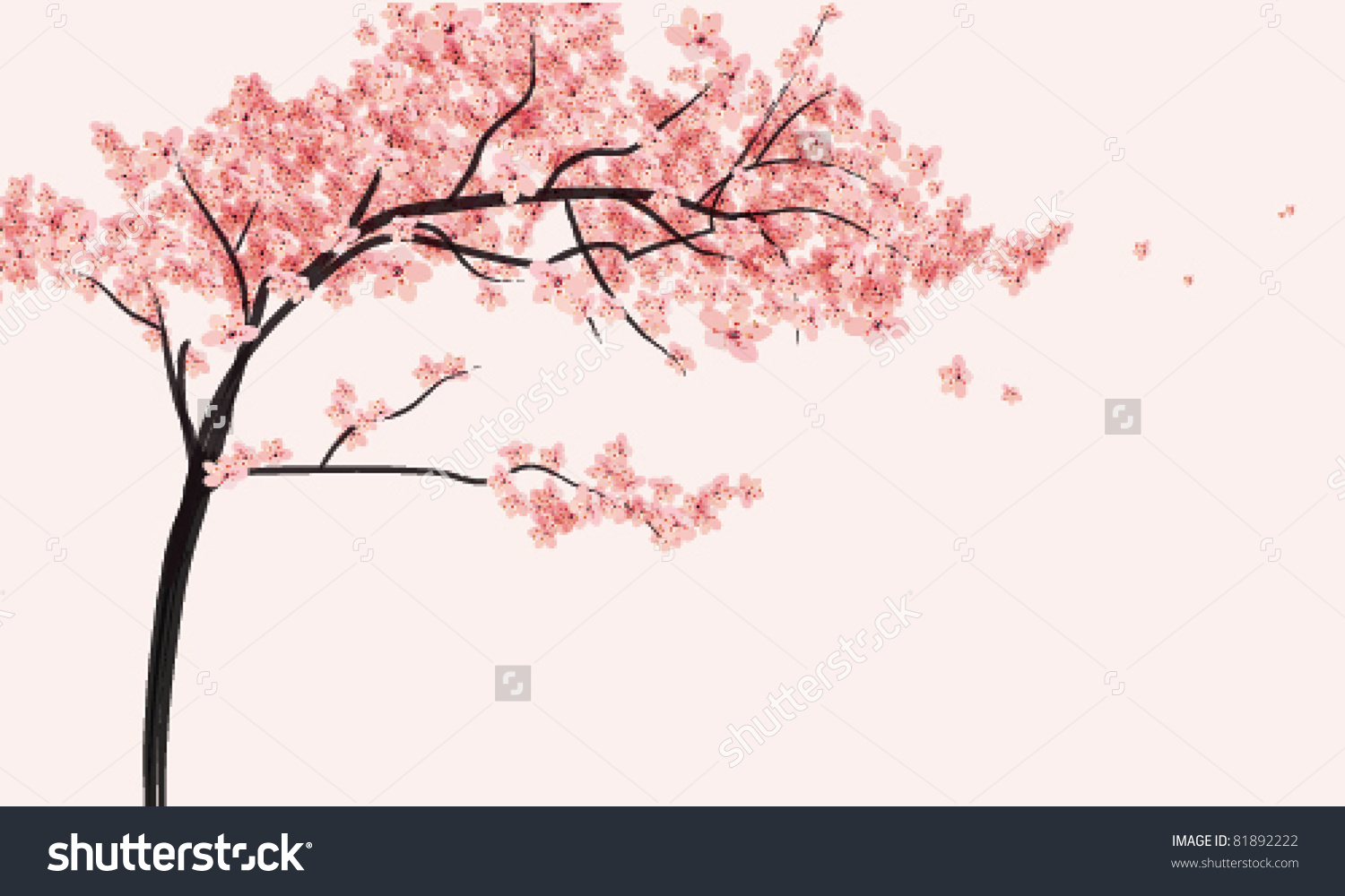 Cherry Blossomtree Flowers Vector Illustration Stock Vector.