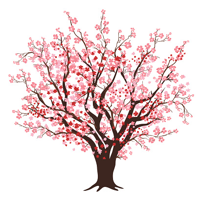 Cherry Tree Clip Art, Vector Images & Illustrations.