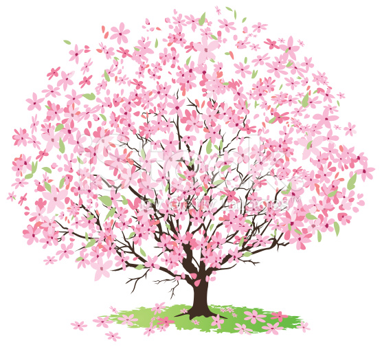 May tree clipart.
