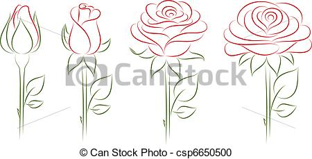 Vector Clipart of Blooming roses. Vector illustration. Vector.