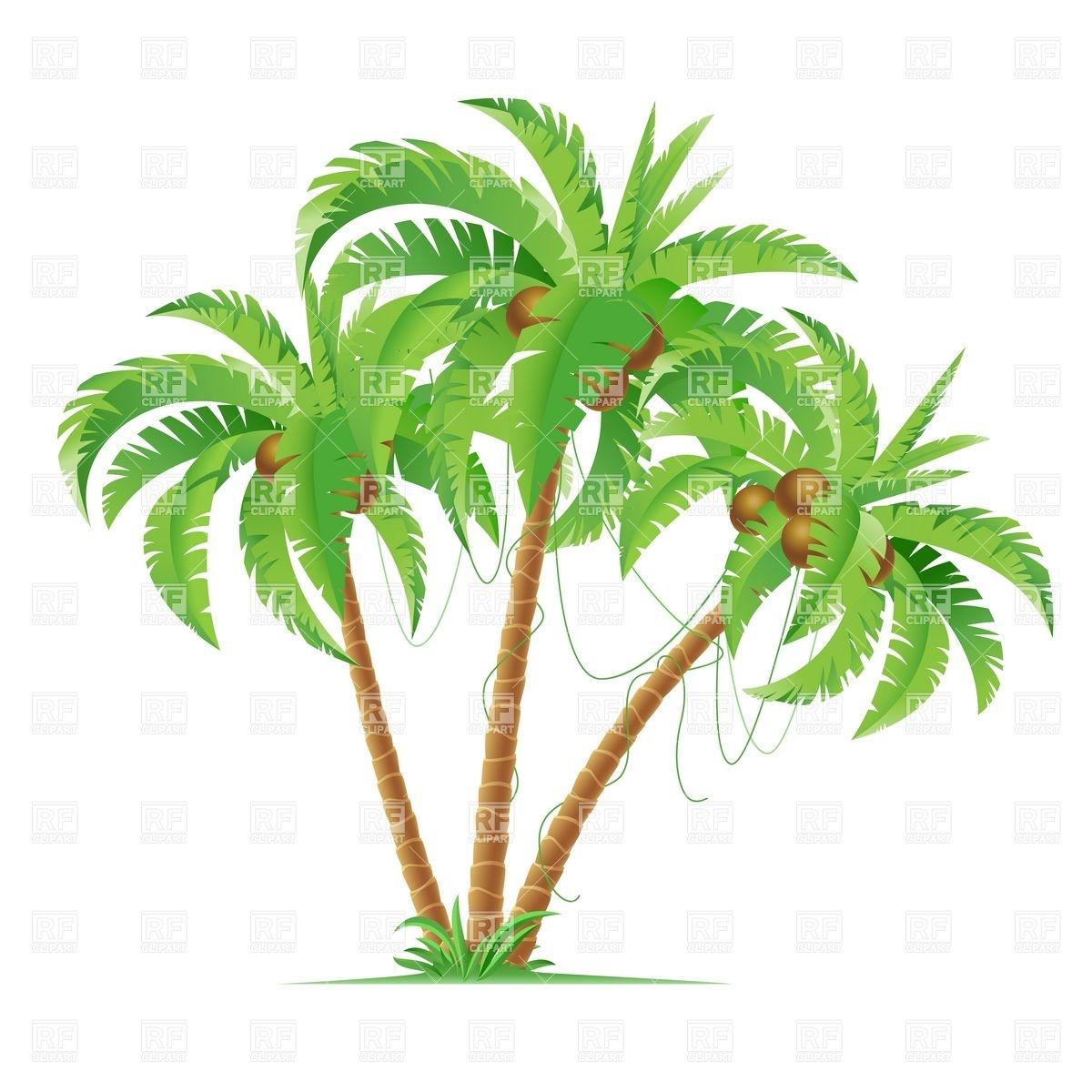 Three cartoon coconut palm trees Vector Image #6835.