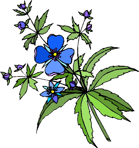 Clip art flowers and plants.