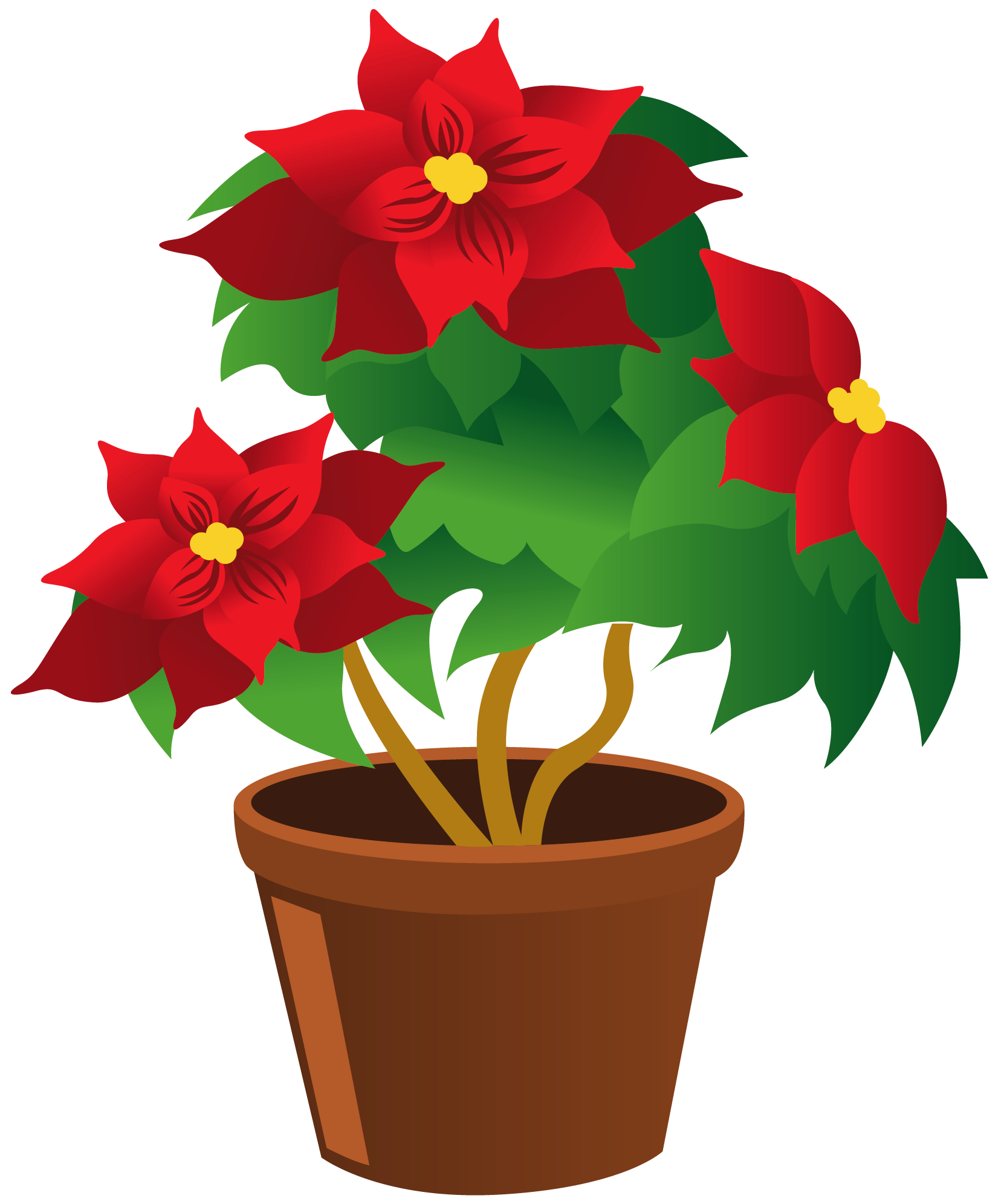 Flower Potted Plant Clipart.