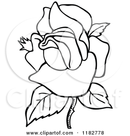 Clipart of a Black and White Blooming Rose.