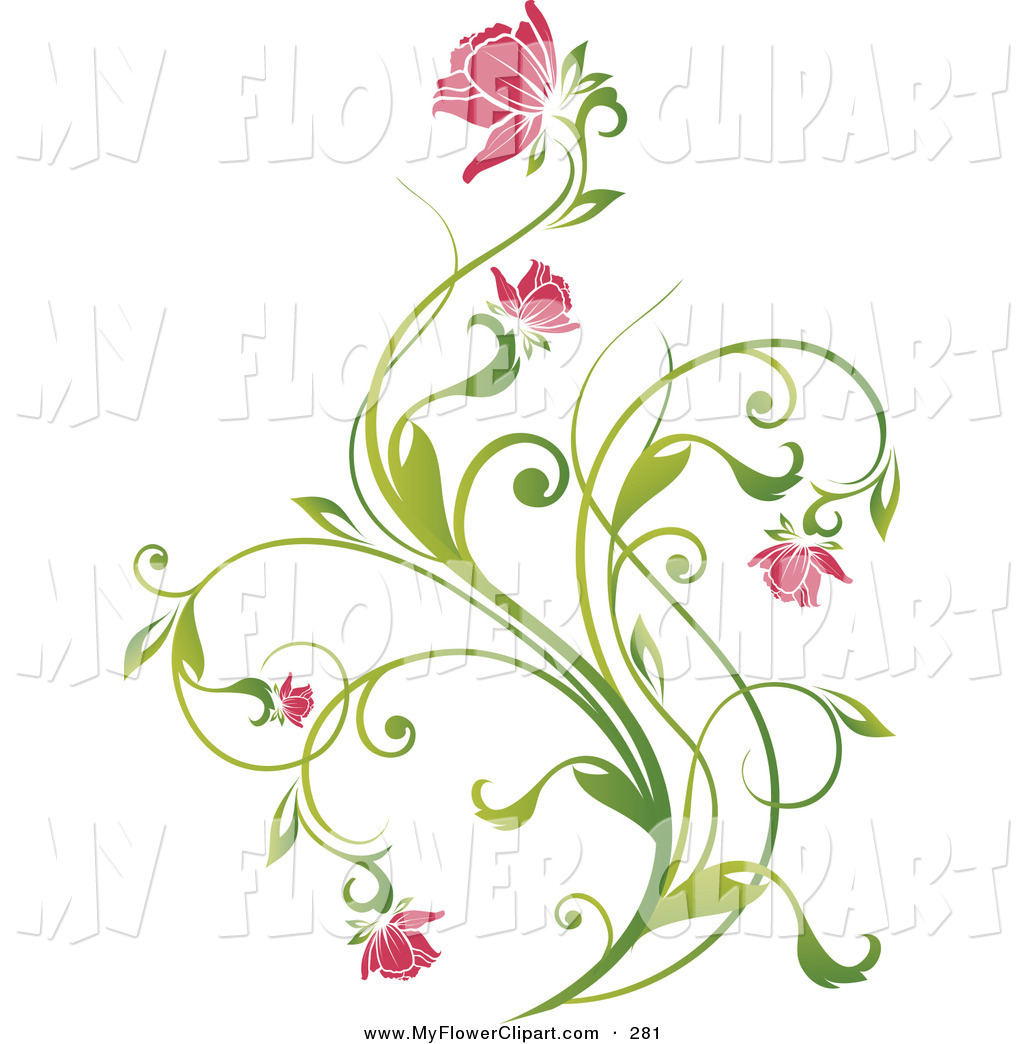 Clip Art of a Delicate Green Vine with Pink Blooming Flowers on a.