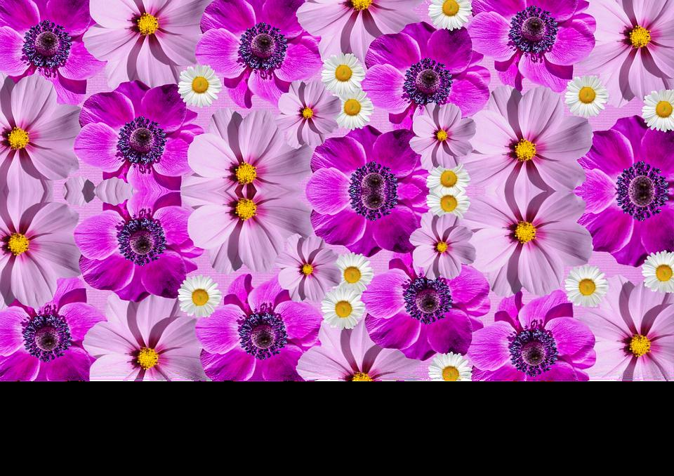 Bloompurple clipart #3