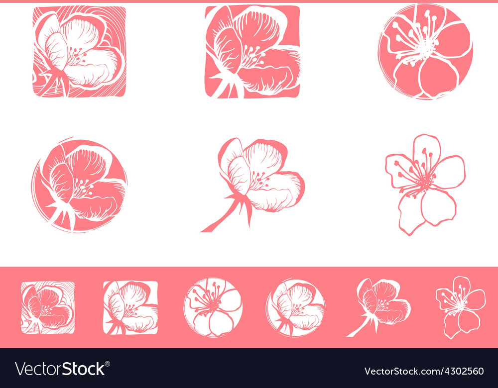 Cherry Blossom Logo.