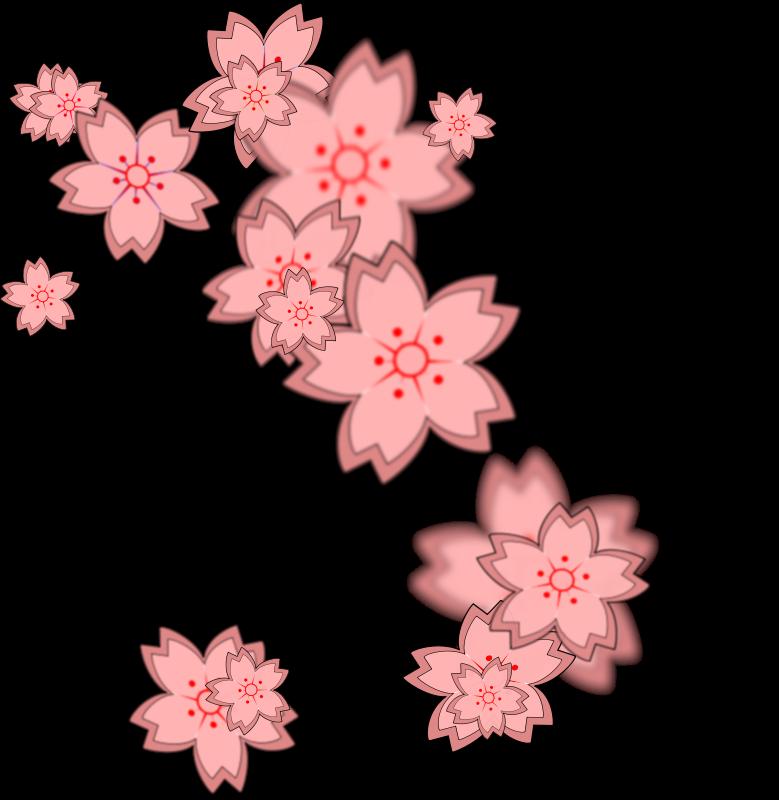Blossom petals clipart - Clipground