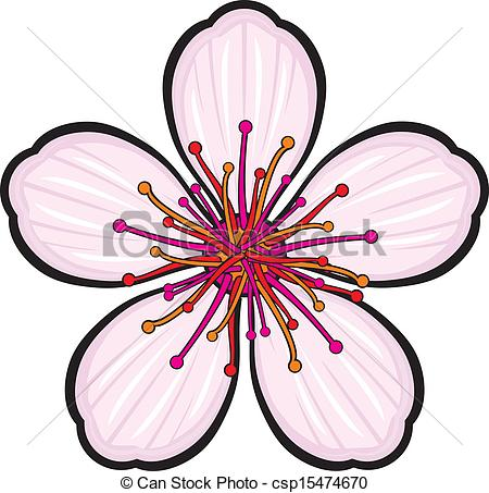 Vectors Illustration of Cherry blossom flower csp15474670.