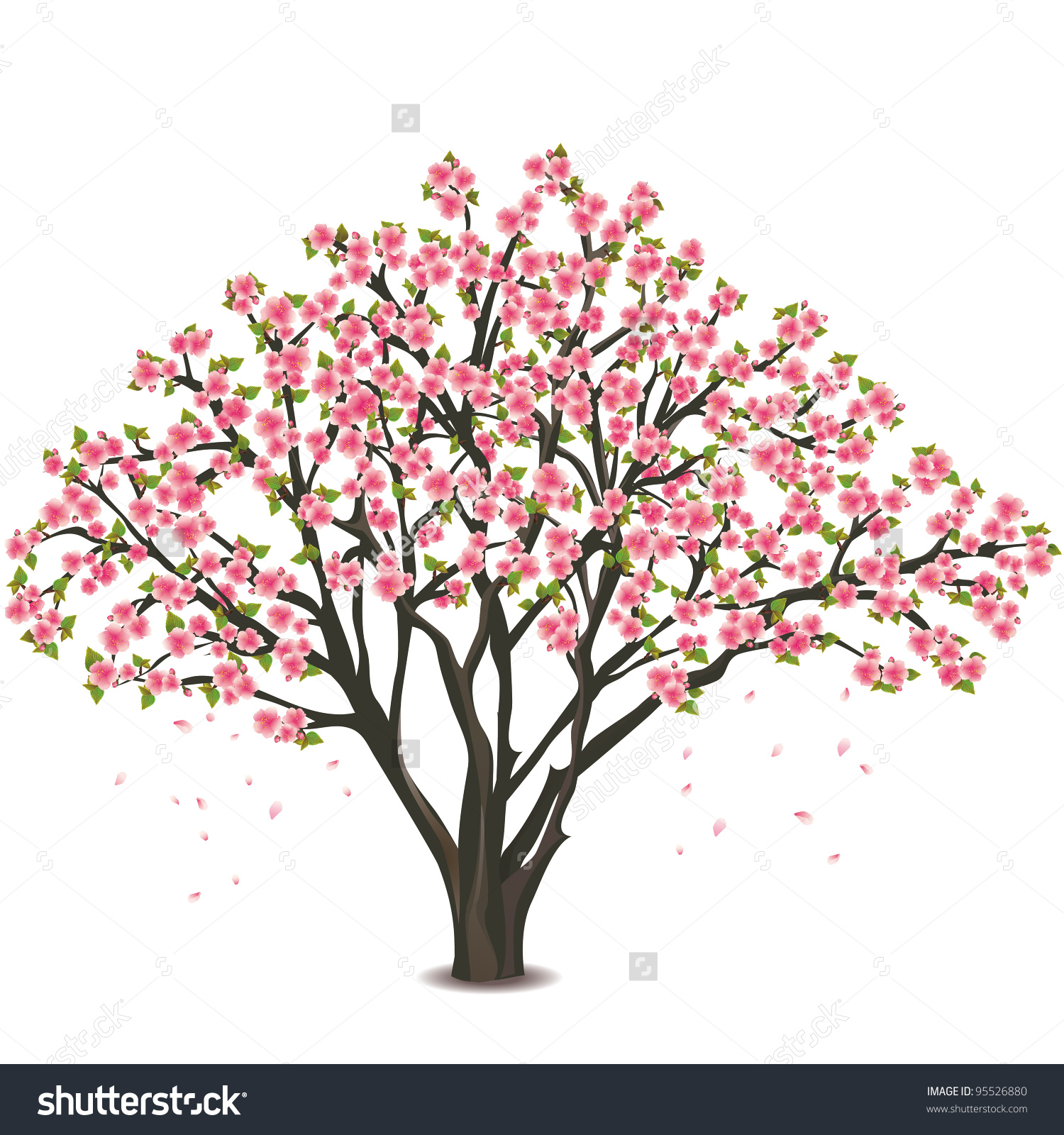 Cherry Blossom Tree Black And White: Blossomed Clipart