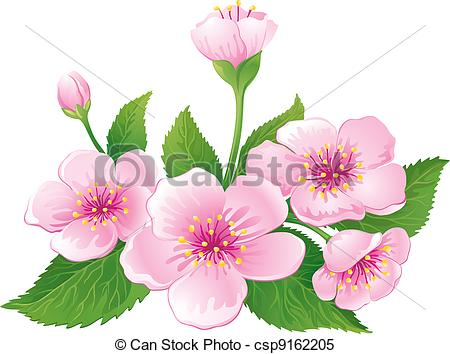 Clipart Vector of Cherry Blossom.