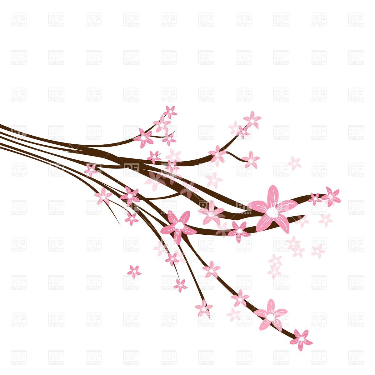 Blossoming cherry branch Vector Image #24528.