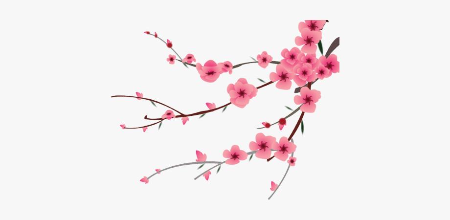 Cherry Blossom Clipart Peach Blossom.