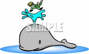 Blowhole clipart.