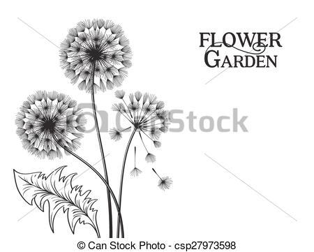 EPS Vectors of Blowball flower..