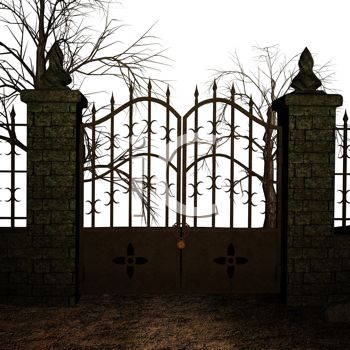 Picture of an Iron Gate In the Dusk With the Wind Blowing the.
