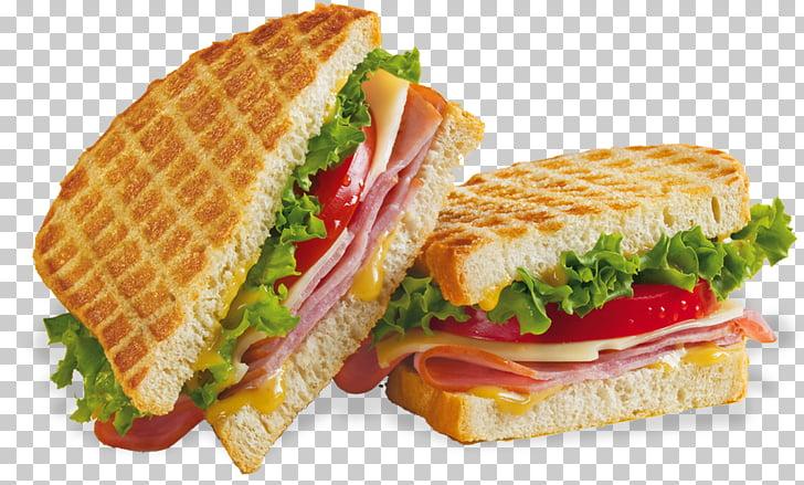 Cheese sandwich Chicken sandwich Vegetable sandwich.