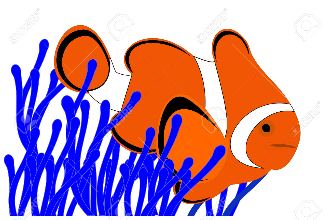 A Clown Fish In A Blue Anemone Royalty Free Cliparts, Vectors, And.
