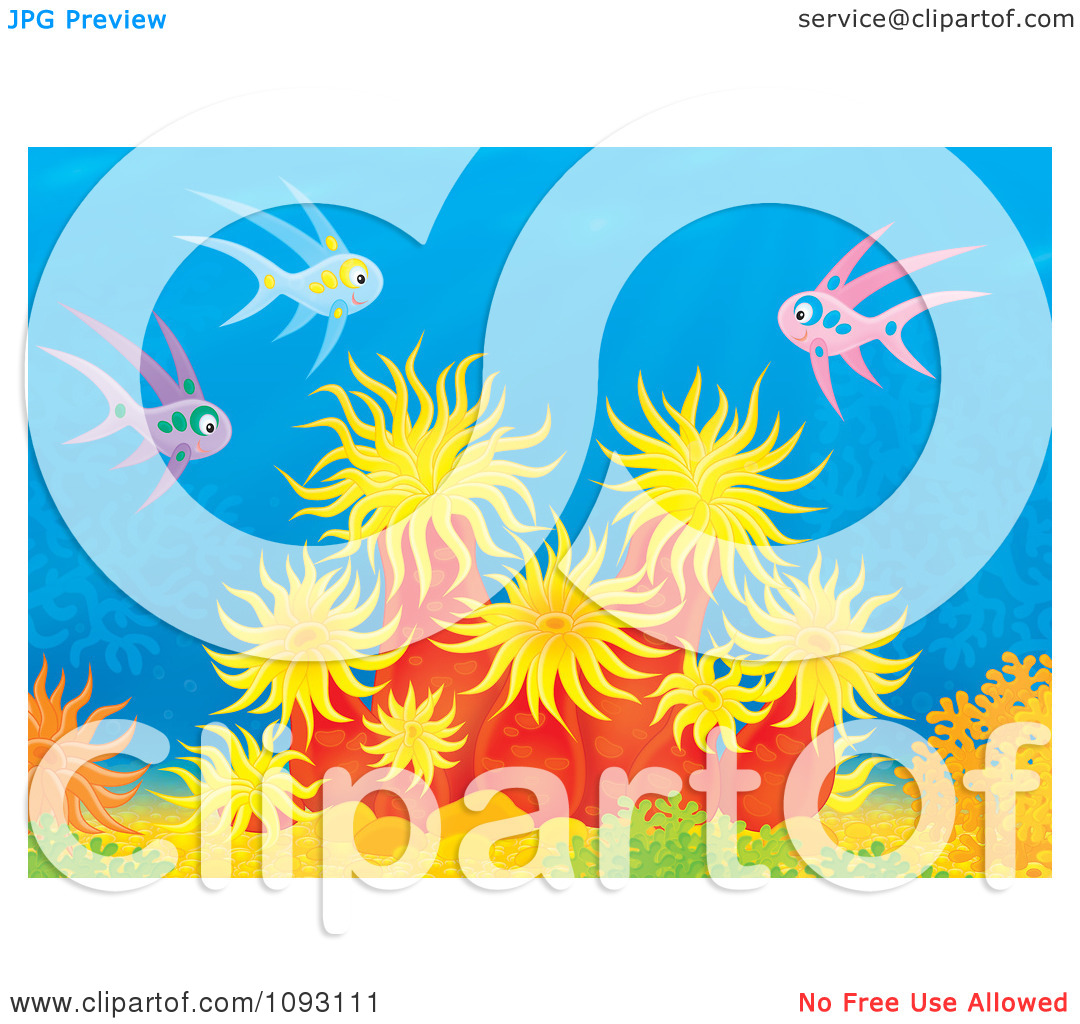 Clipart Pink And Blue Fish Over Sea Anemones On A Reef.