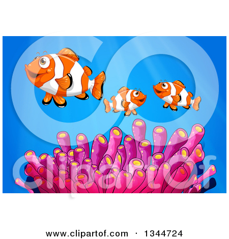 Clipart of a Cartoon Clownfish Family with Pink Anemones over Blue.