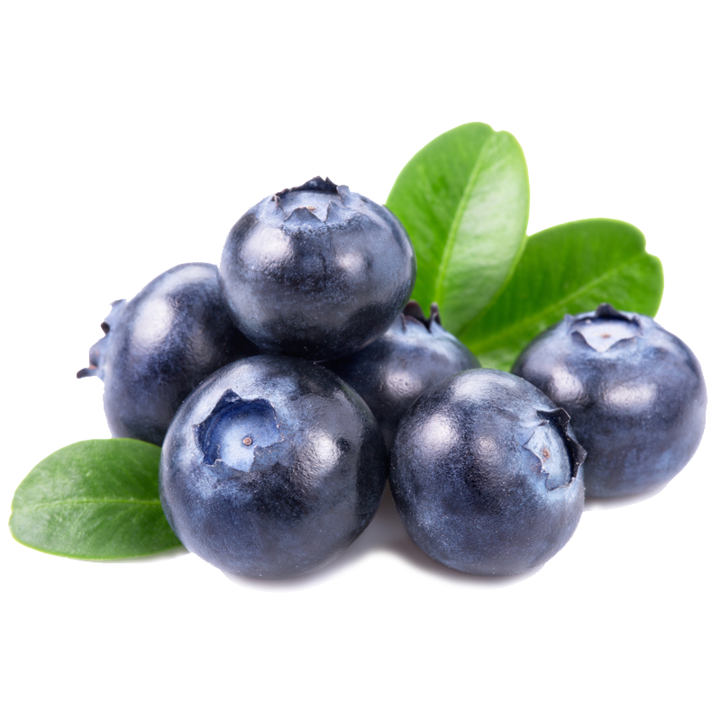 Chile Blueberries (125g).