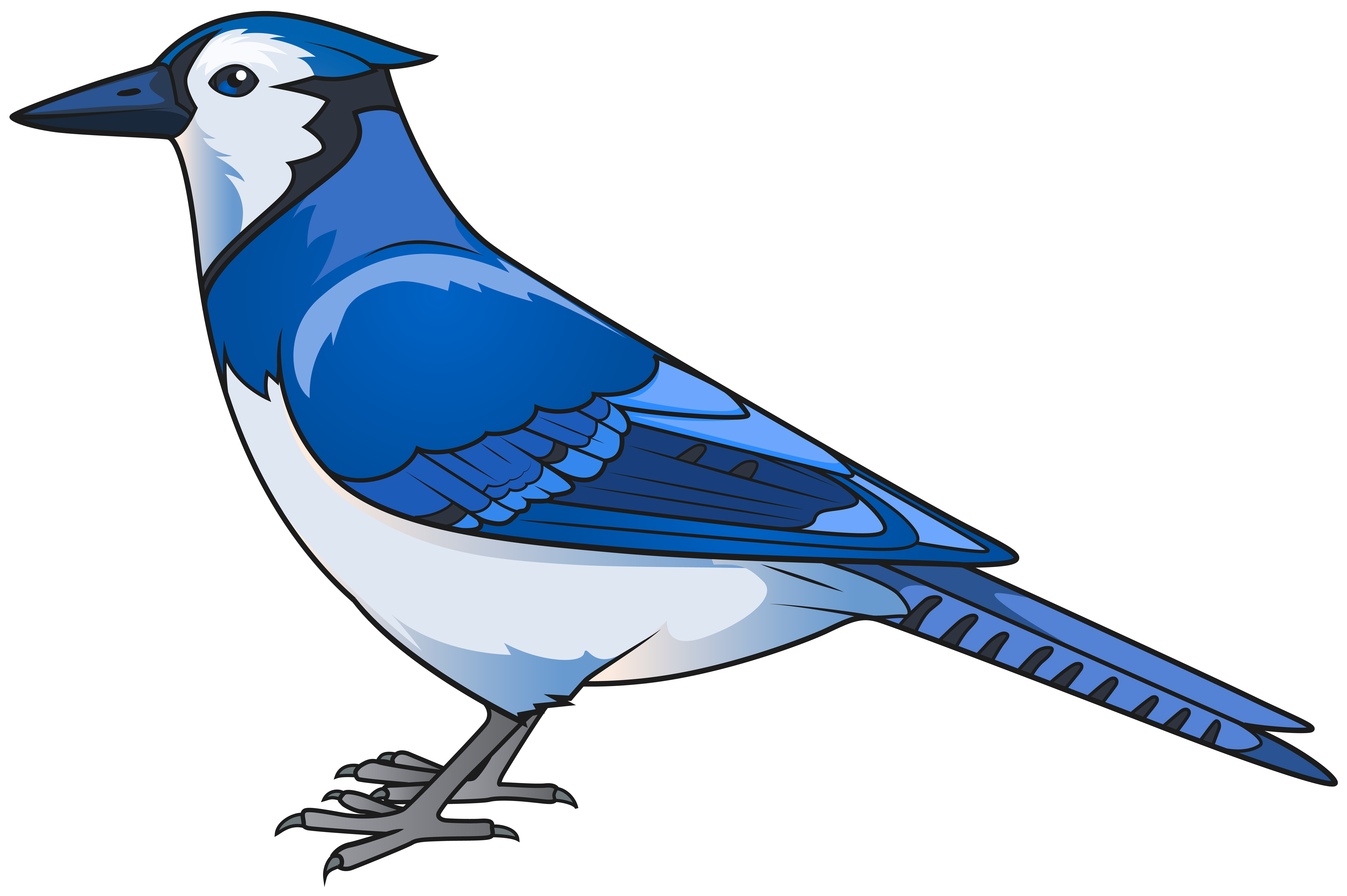 Blue Bird Transparent PNG Clip Art Image.