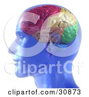 Clipart 3d Glowing Blue Brain.
