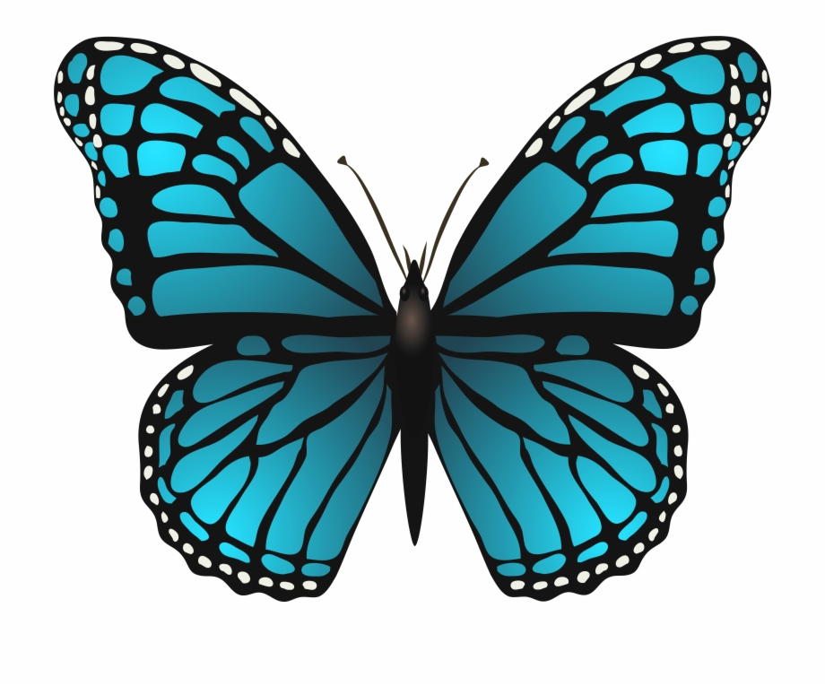 Free Blue Butterfly Transparent, Download Free Clip Art.
