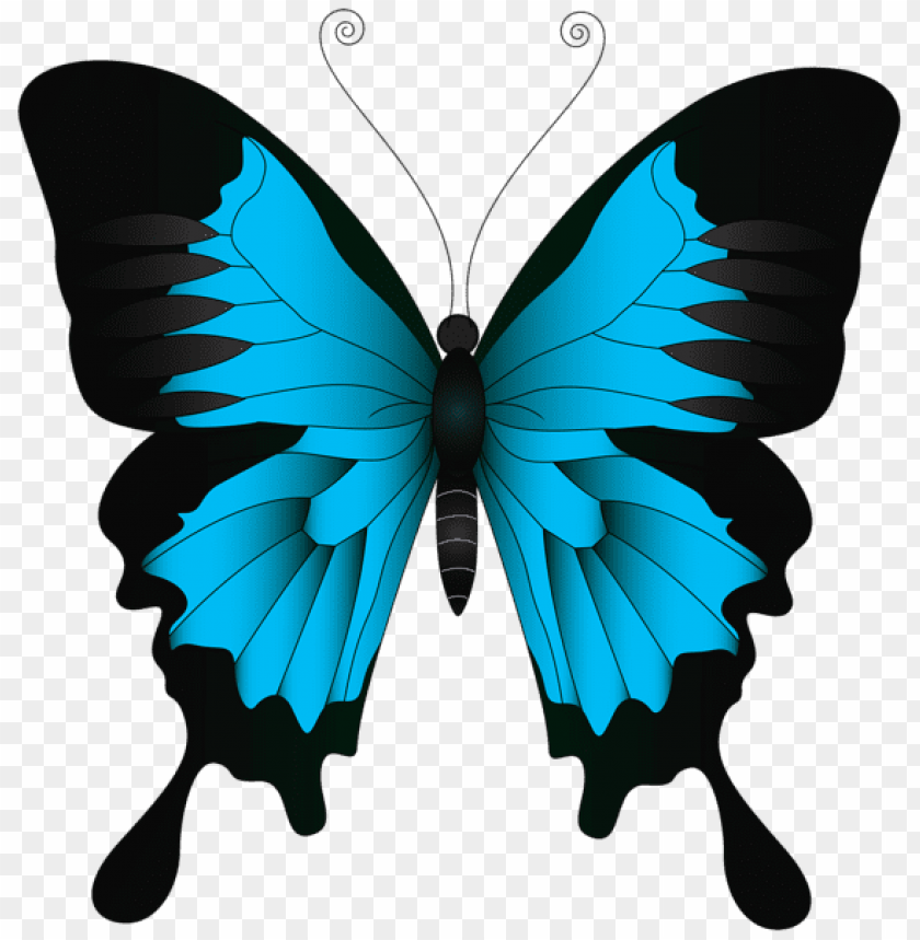 Download blue butterfly clipart png photo.