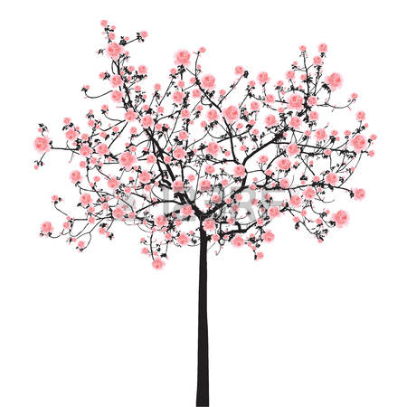10,226 Cherry Blossom Tree Stock Illustrations, Cliparts And.
