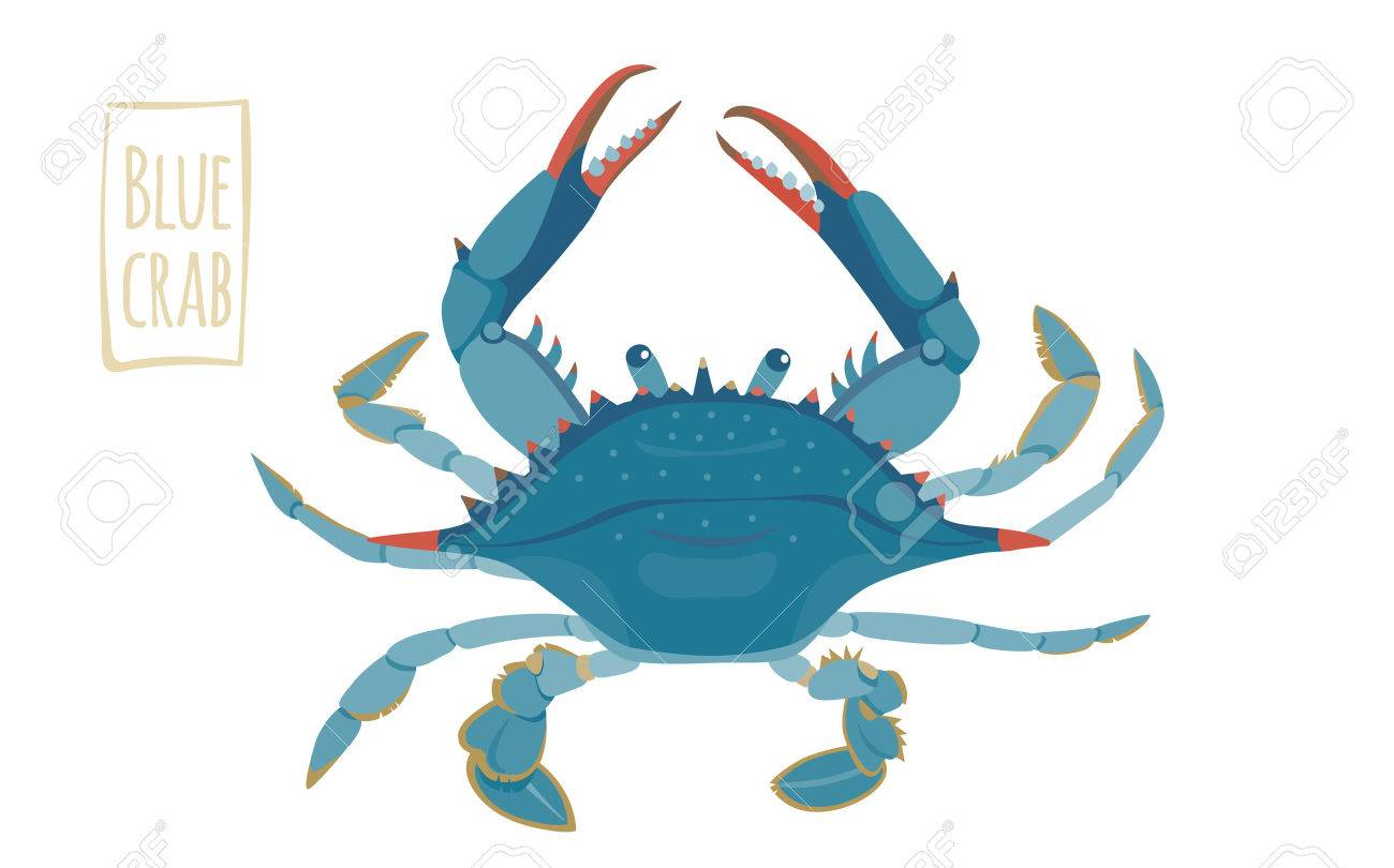 Blue crab, vector cartoon illustration.