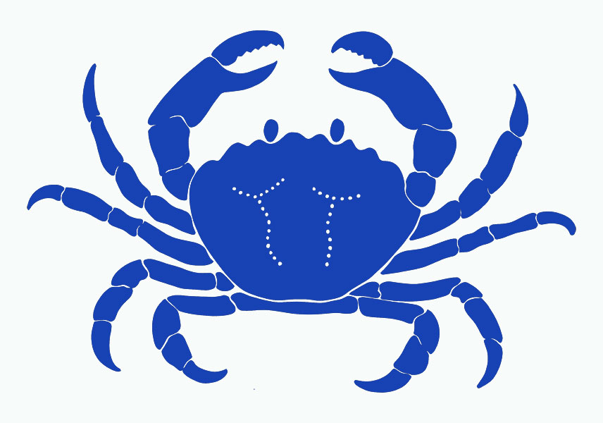 Free Crab Cliparts Outline, Download Free Clip Art, Free Clip Art on.