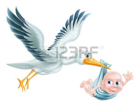 442 Blue Crane Bird Stock Vector Illustration And Royalty Free.