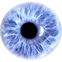 Download Eye Free PNG photo images and clipart.