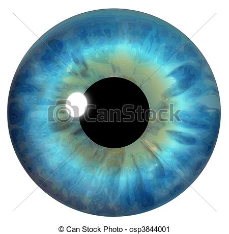 Eye Illustrations and Stock Art. 170,768 Eye illustration and.