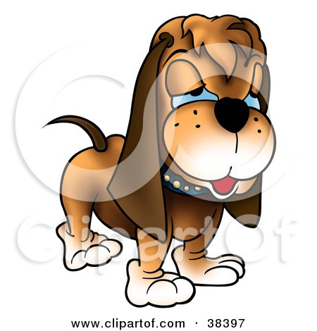 Clipart Illustration of a Grumpy Hound Dog With Blue Eyes by dero.