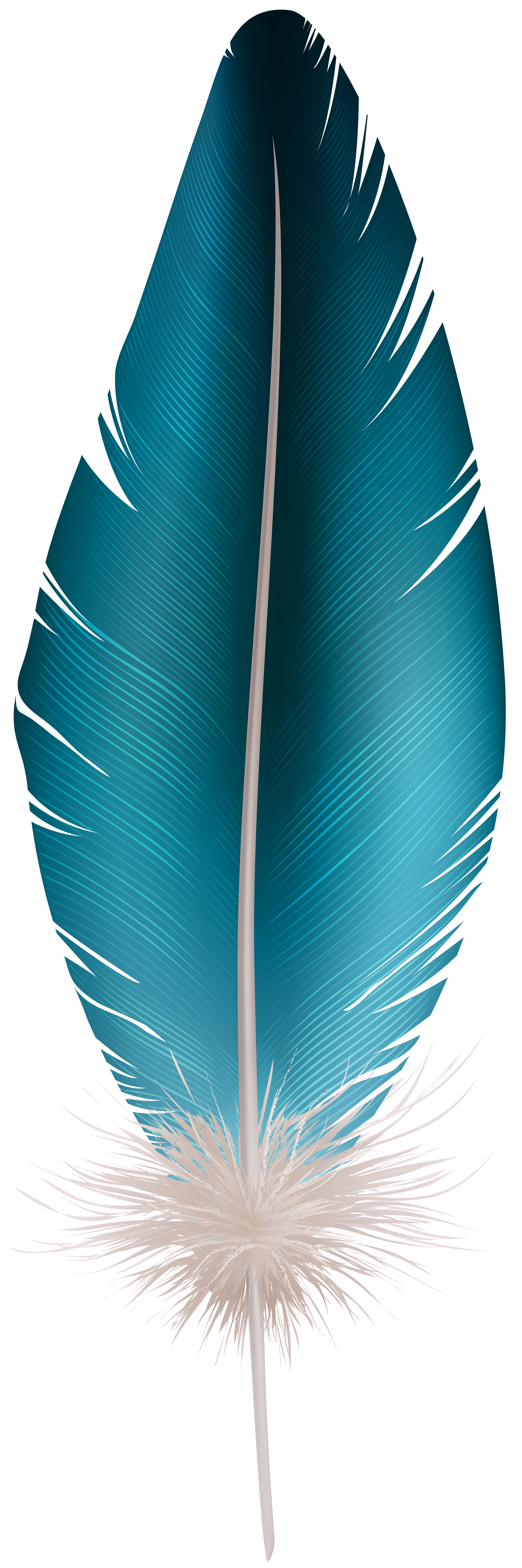 Feather Blue PNG Clip Art Image.