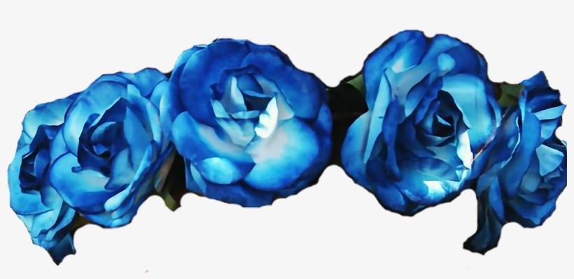 Flowers Roses Flowercrown Diadem Blue Flower Crown.