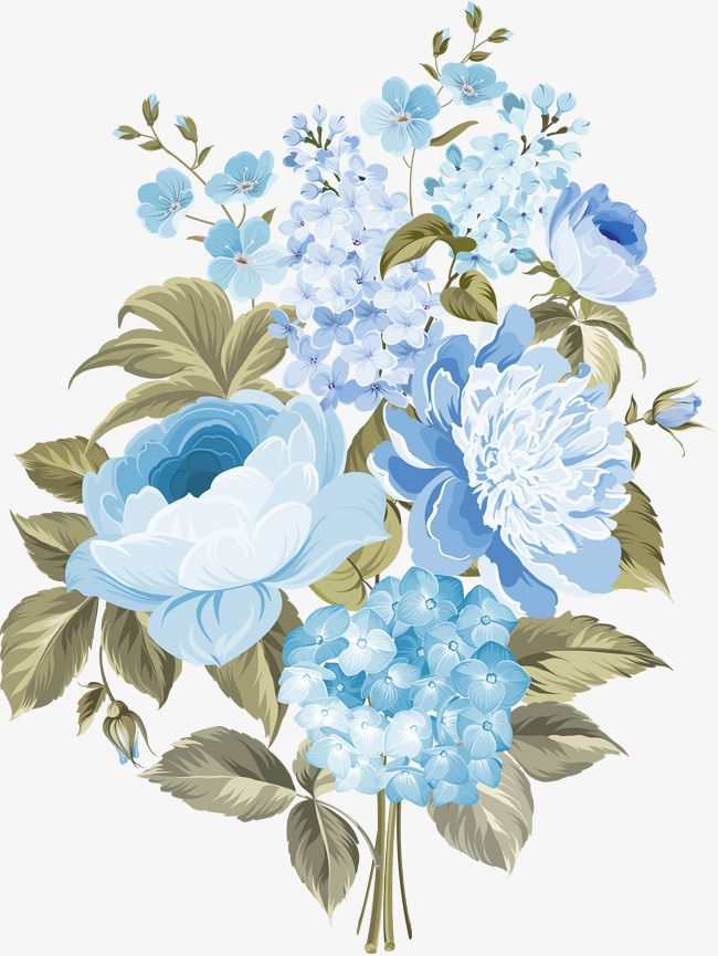 Flowers In Blue Flowers, Blue, Flowers In Clusters, Flower PNG.