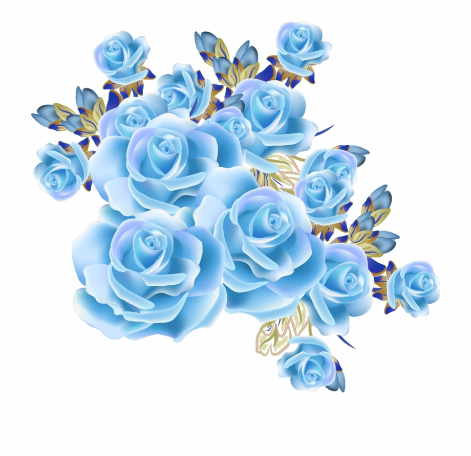 mq #blue #rose #roses #flowers #flower Free PNG Images & Clipart.
