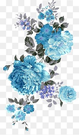 2019 的Flowers, Peony, Blue PNG Transparent Image and Clipart for.