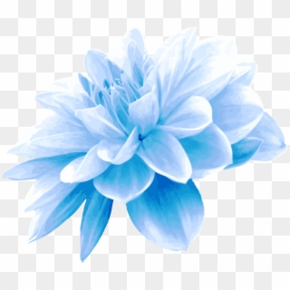 Blue Flower PNG Transparent For Free Download.