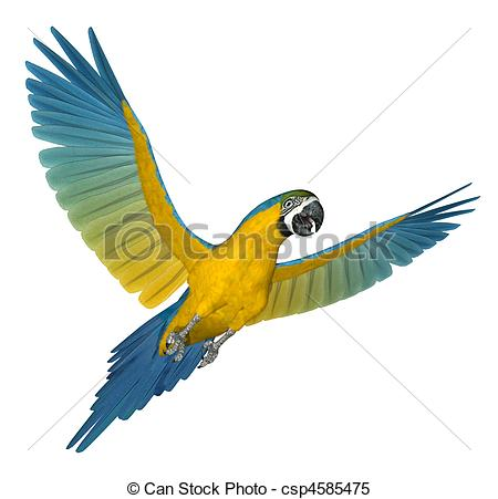 Macaw Clip Art and Stock Illustrations. 3,720 Macaw EPS.