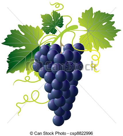 Clip Art Vector of bunch of blue grapes isolated with green leaves.